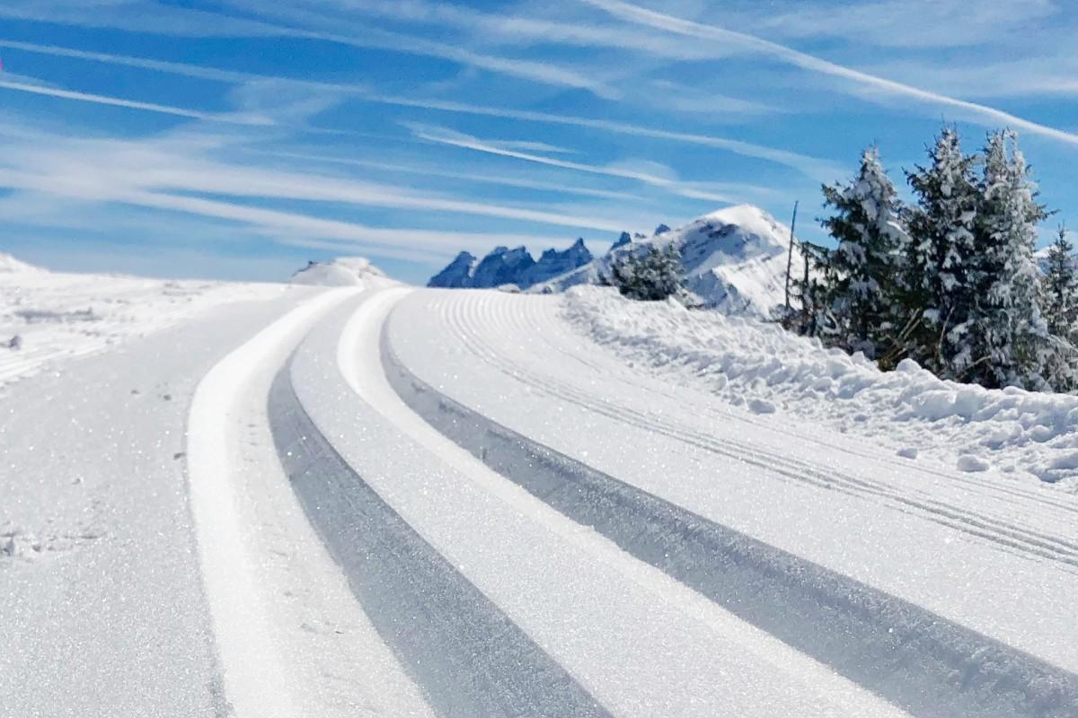Nordic skiing & biathlon lessons