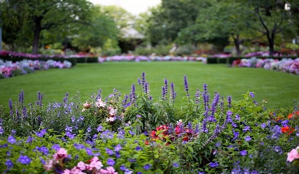 Landscaping / Gardening Service