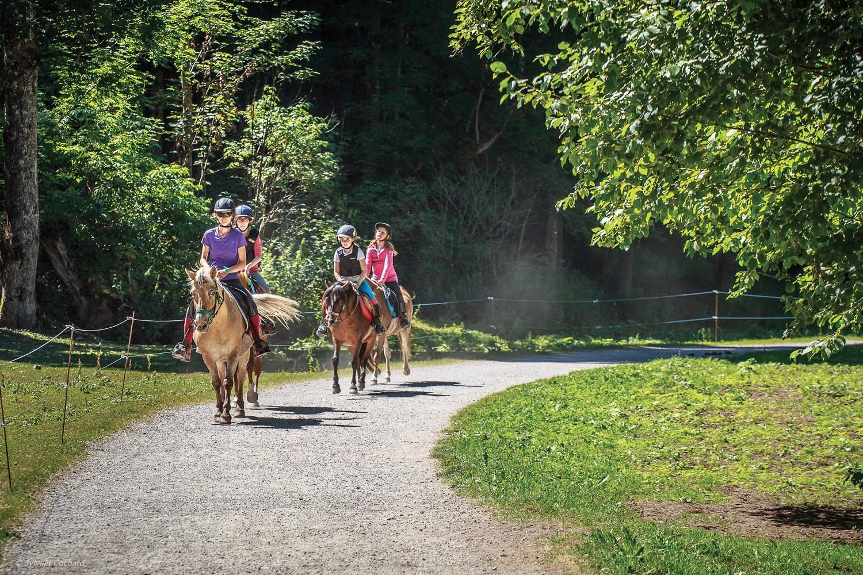 parc-des-dereches-morzine-centre-equestre
