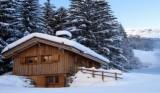 goterose-pernet-hiver-1259