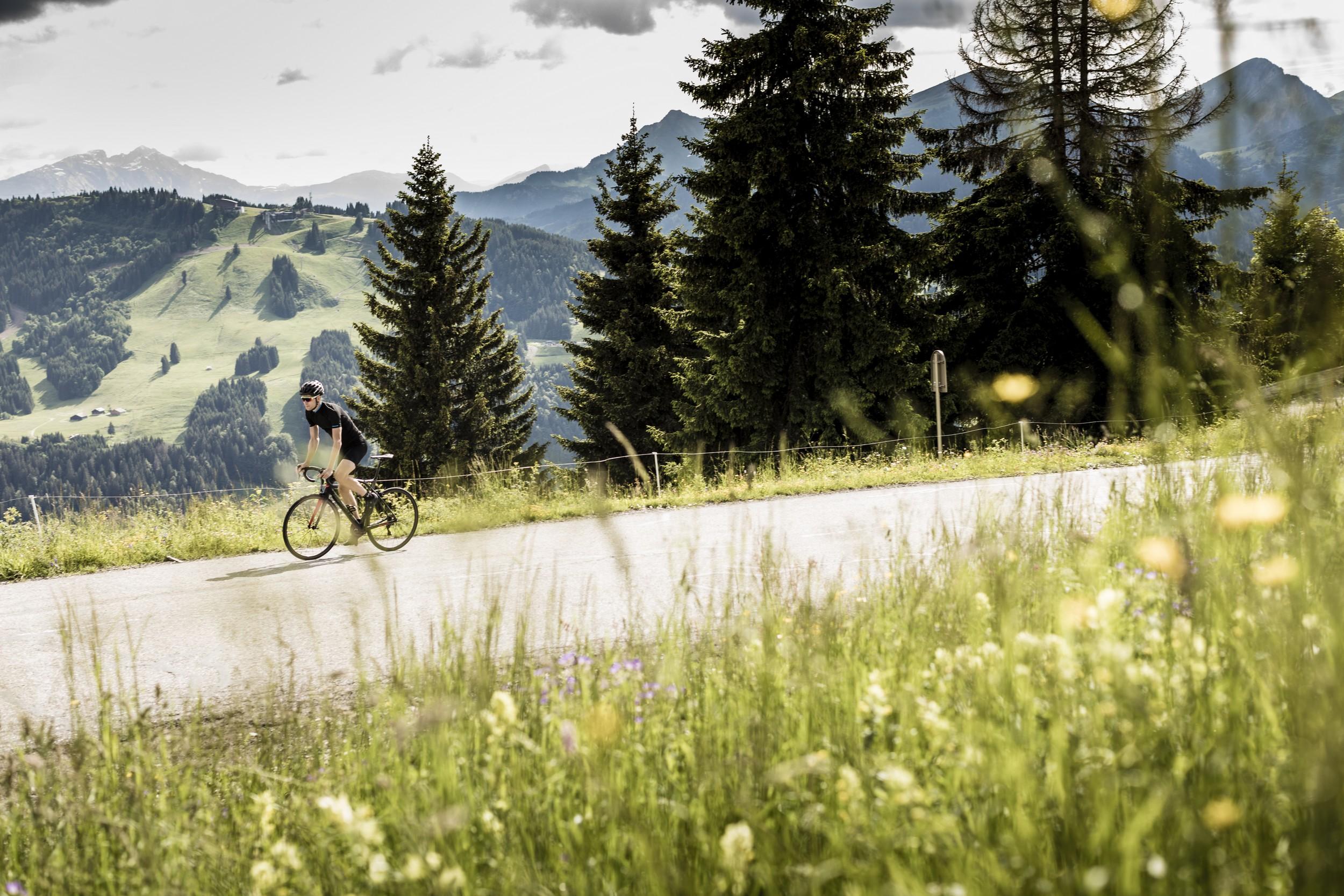 Top 10 des activités pour passer de bonnes vacances dans le domaine des Portes du soleil (été) - © Dom Daher
